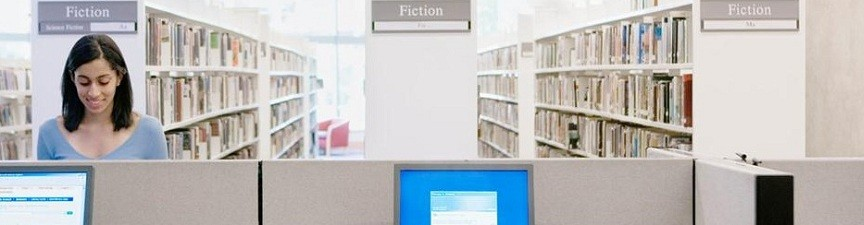 Foundation for Southern Tier Libraries